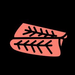 salmón teriyaki